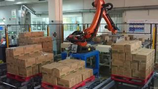 Industrial robots for pallets
